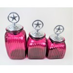 60004 HOT PINK 3PC. CANISTER SET WITH LIDS